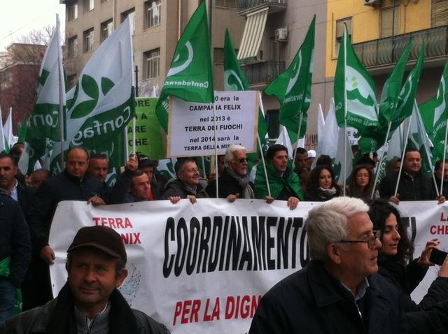 Manifestazione Dicembre 2013