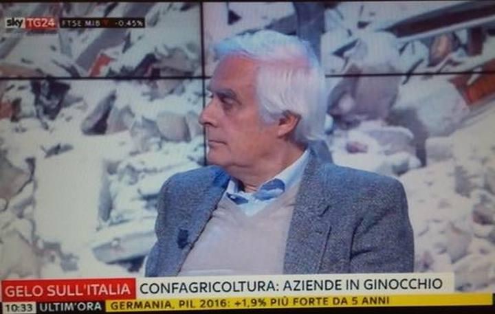 Il gelo al Sud mette ko l'agricoltura: Sergio Ricotta interviene a SkyTg24