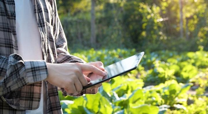 """Presentazione di """"Prima"""", programma euro-mediterraneo di ricerca sull'agricoltura e agroalimentare"""