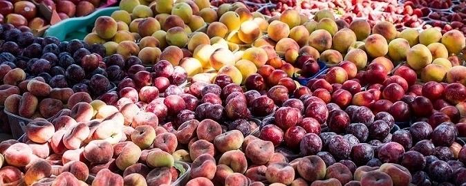 """Frutta estiva in crisi, Confagricoltura: """"Tre chili valgono quanto un caffè"""""""
