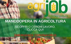"""Emergenza manodopera nelle campagne: con """"Agrijob"""" Confagricoltura fa incontrare domanda e offerta di lavoro"""