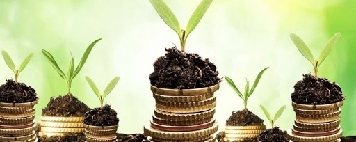 Bene la cambiale agraria messa in campo da Ismea, utile per la prosecuzione dell'agricoltura, fondamentale per sostenere l'occupazione