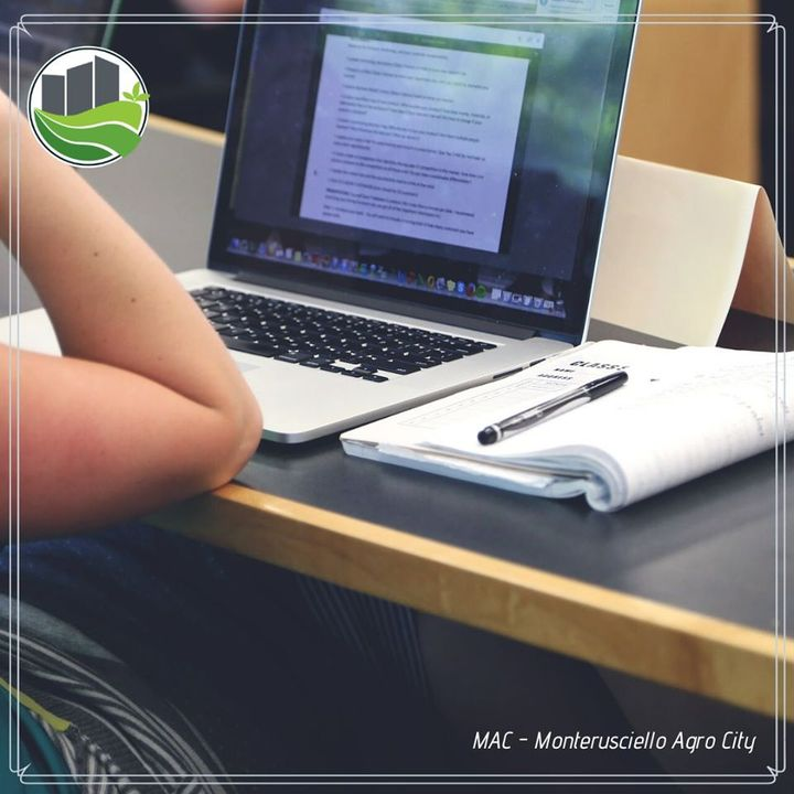 Pubblicate le graduatorie provvisorie relative al IV bando di selezione per il conferimento di 40 borse di studio per giovani under 30