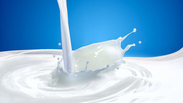 SustaIn4Food: un progetto per lo sviluppo di novel food nel settore lattiero caseario