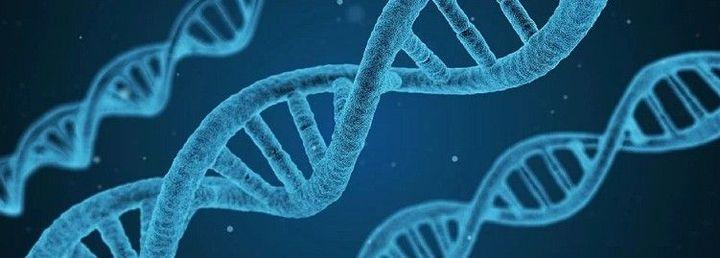 """Biotecnologie, Giansanti: """"Bene la commissione Ue. Ora avanti con istituzioni e scienza per chiara regolamentazione"""""""