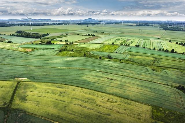 Vademecum Prelazione Agraria