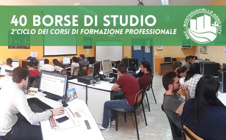 BANDO DI SELEZIONE per il conferimento di n. 40 borse di studio per giovani under 30 nell'ambito del progetto europeo MAC - Monterusciello Agro-City - 2° Ciclo