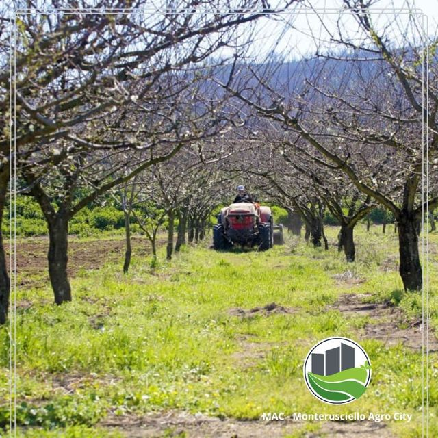 Processo di rigenerazione agricola
