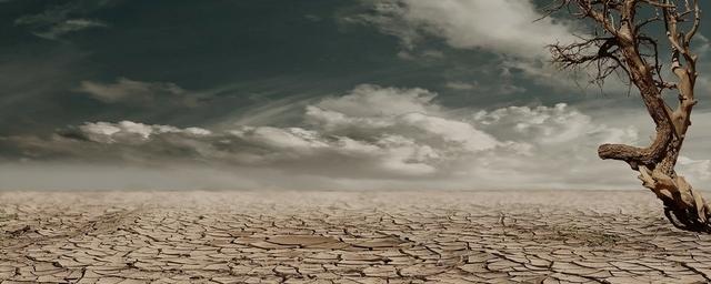 Water day: l'acqua ed i cambiamenti climatici