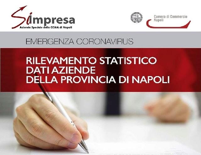 Coronavirus Rilevamento Statistico Dati Aziende Provincia di Napoli