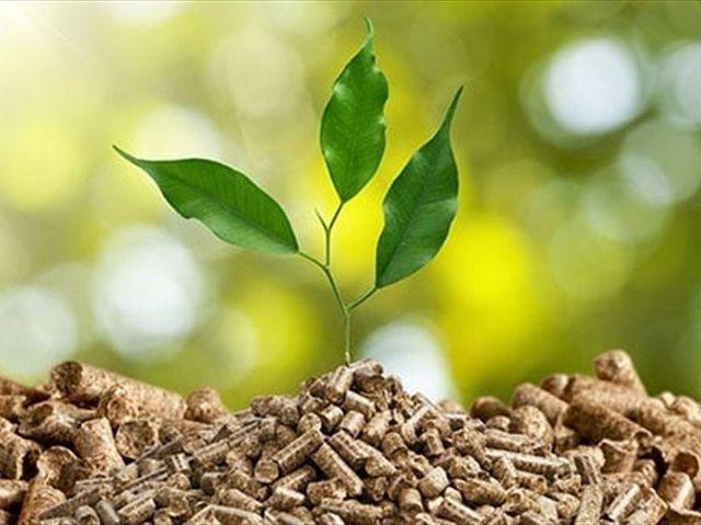 Covid-19, Fase 3: L'agricoltura punta su sostenibilità e bioeconomia