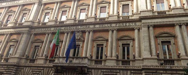 """Decreto Rilancio, Giansanti: """"Estendere gli sgravi previdenziali ad altri comparti penalizzati dalla pandemia"""""""