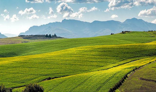 Sviluppo rurale: Fondamentale garantire tempestività e qualità della spesa pubblica in agricoltura