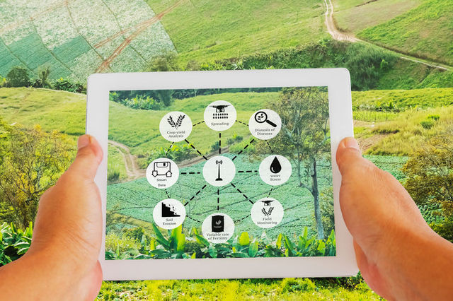 TIM e Confagricoltura, al via 'Agritech Innovation Hub' per lo sviluppo della smart agriculture