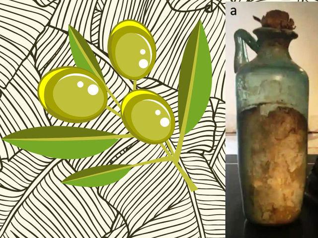 Scoperto e identificato l'olio di oliva più antico del mondo