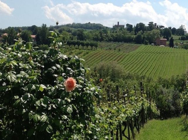 """European Food Forum: """"What can Smart Villages do for the food industry, bio-economy, and to promote rural tourism?"""" (7 settembre, 13.00-14.30)"""