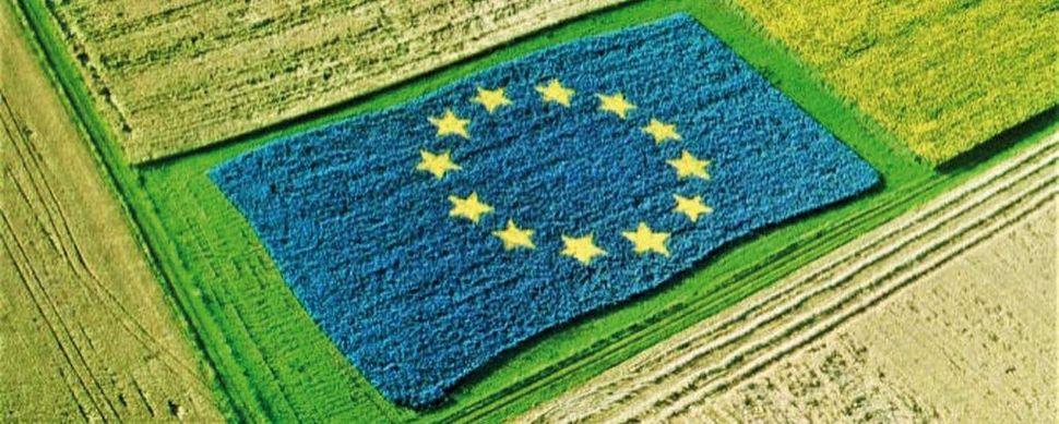 Confagricoltura al Tavolo di partenariato per il PSN. Giansanti: la PAC rimanga politica agricola ed economica