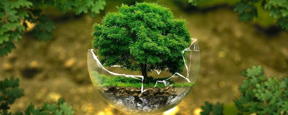 """Giornata Mondiale della Terra, Confagricoltura: """"Il nostro settore in prima linea per la salvaguardia del Pianeta"""""""